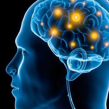 Η επίδραση του Ελληνικού αλφάβητου στον ανθρώπινο εγκέφαλο.